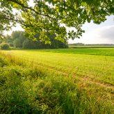 Cena orné půdy